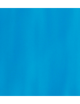 azulejo005